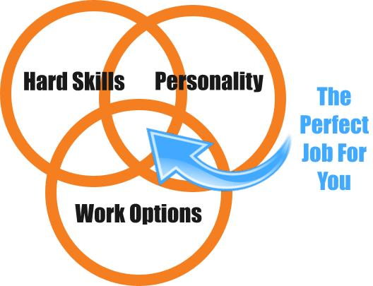 Perfect job sweet spot venn diagram